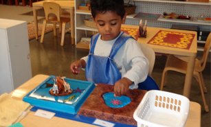 Montessori Primary Program